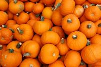 wintersquash-pumpkin.jpg.653x0_q80_crop-smart